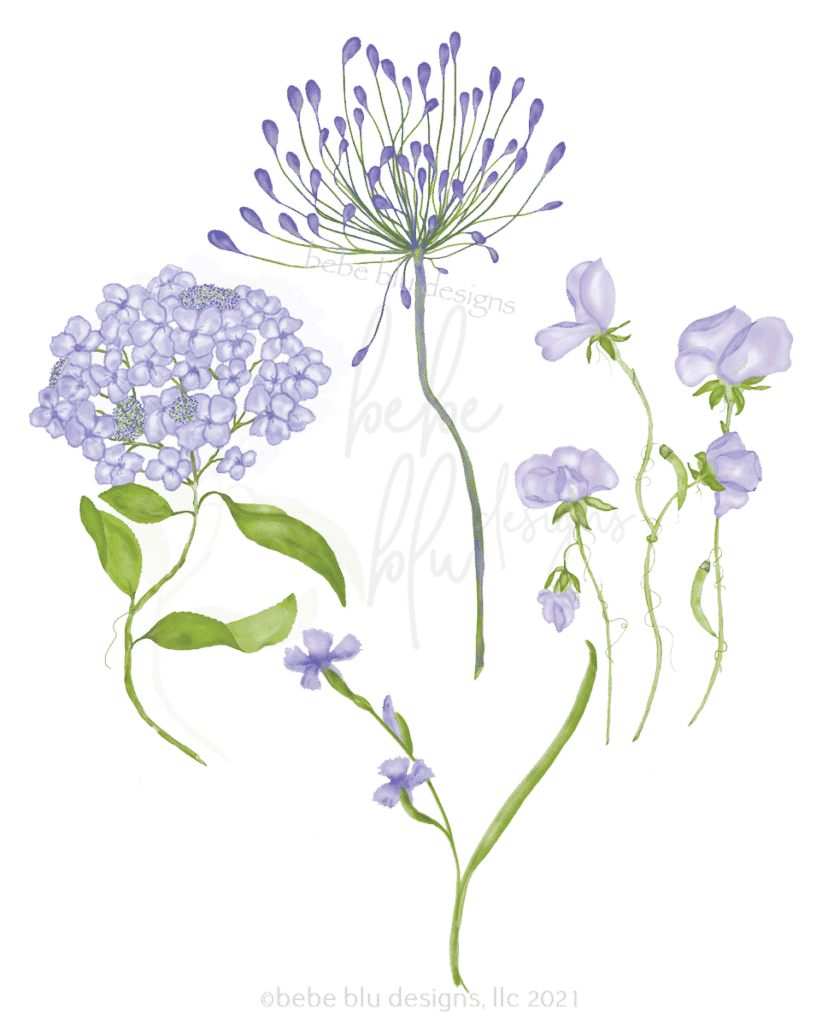 agapanthus and sweet pea for veg