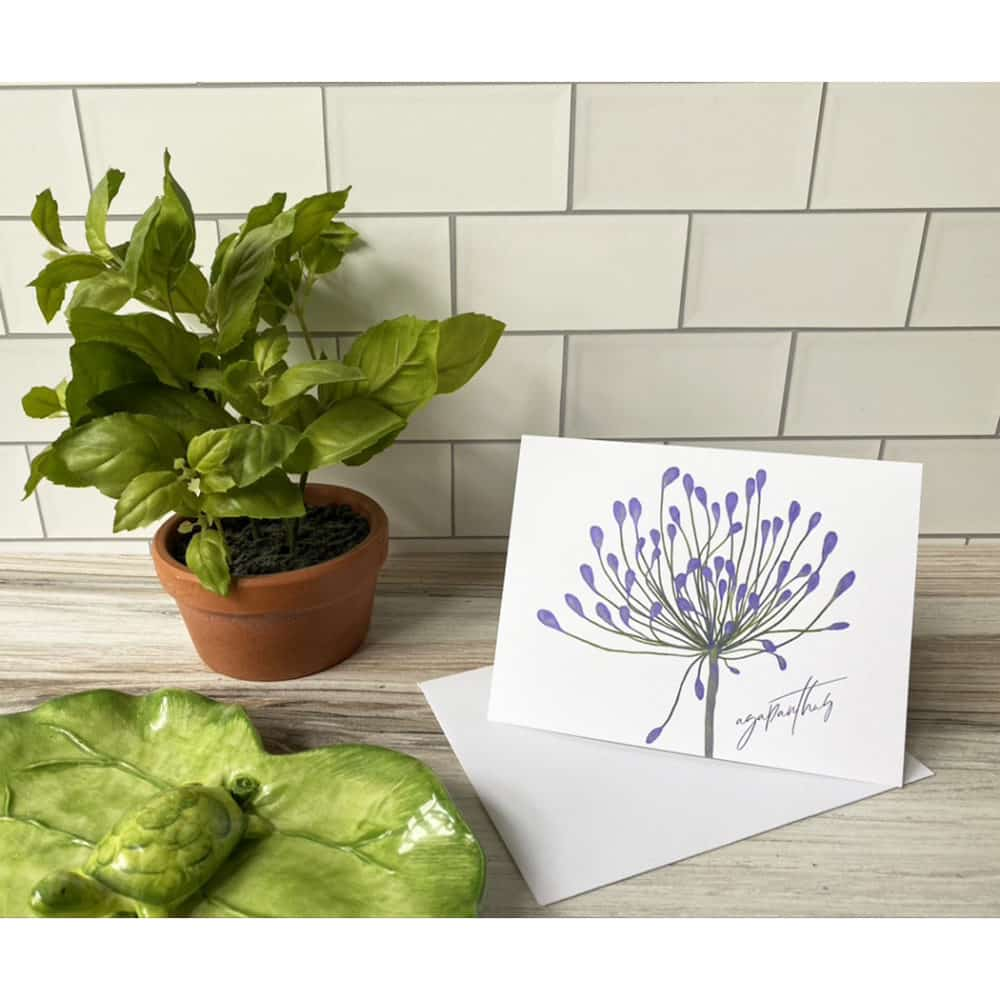 agapanthus note card