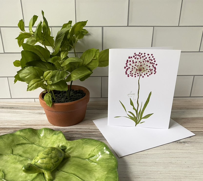 allium note card