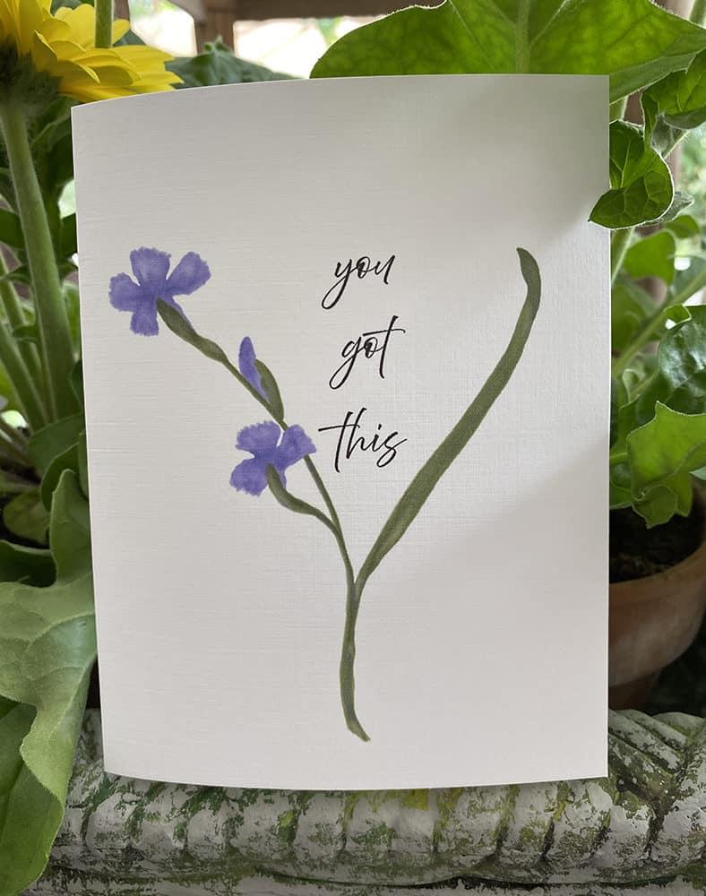 blooming iris 1