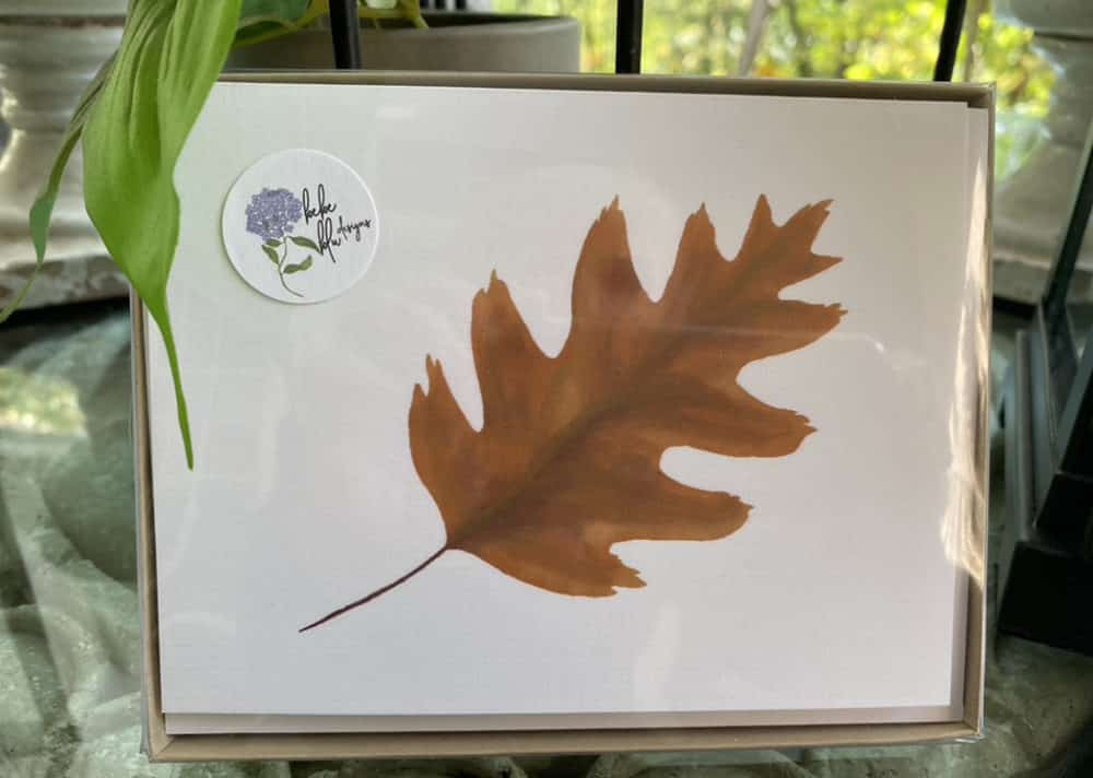 box of leaf