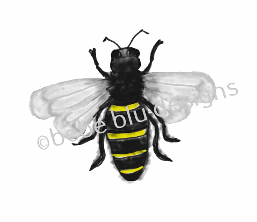 bebeblue designs: bumble bee artwork