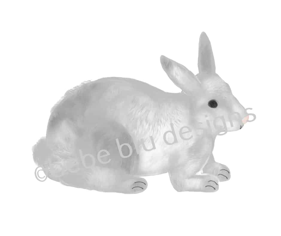 bebeblue designs: gray bunny artwork
