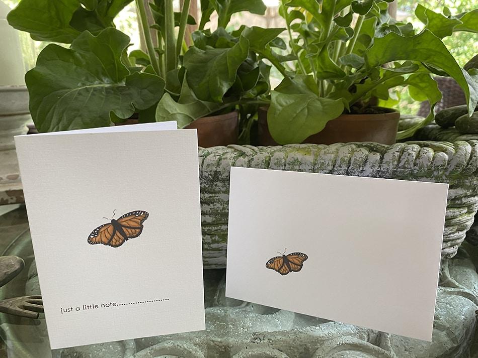 butterfly petite