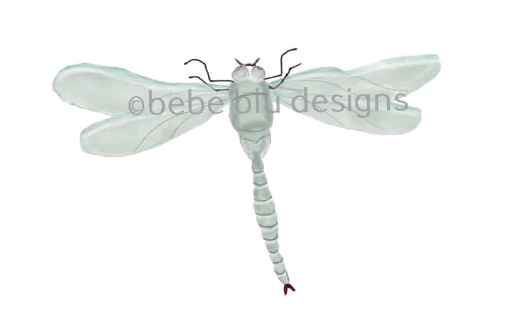 bebeblue designs: dragon fly artwork