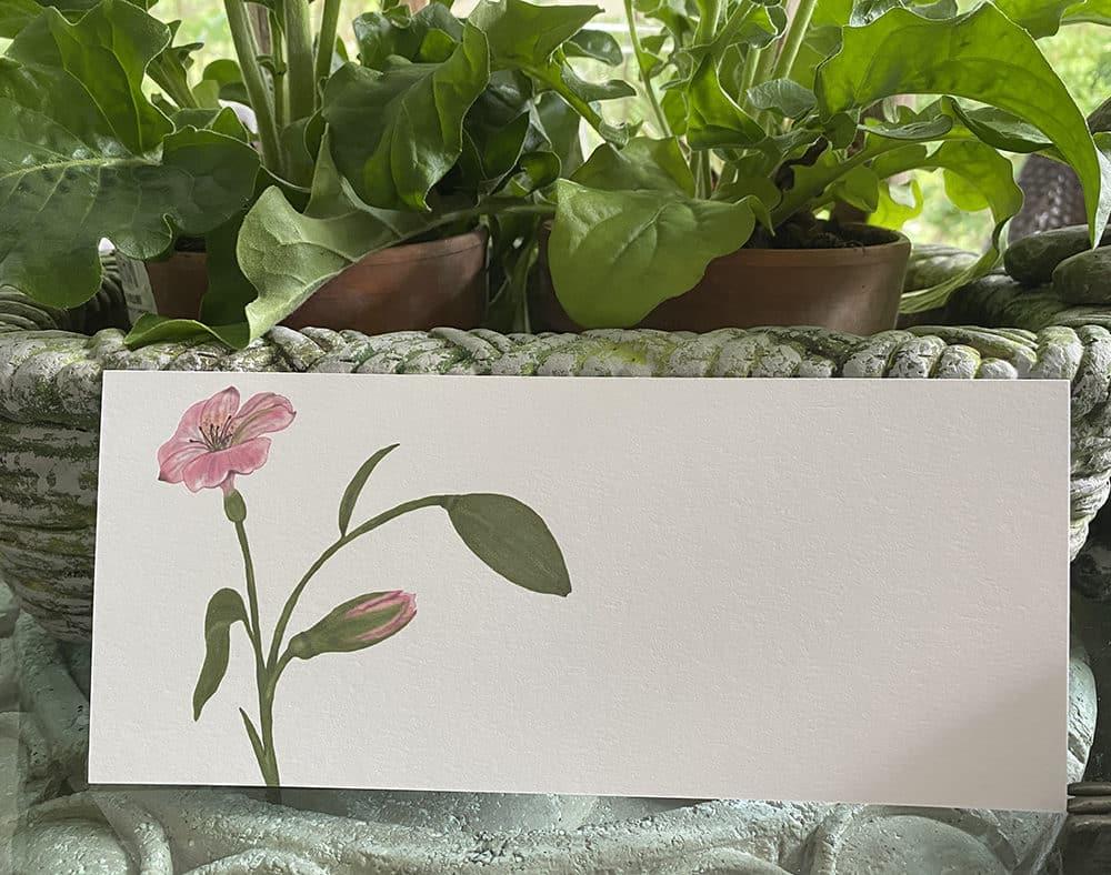 flower buds slim