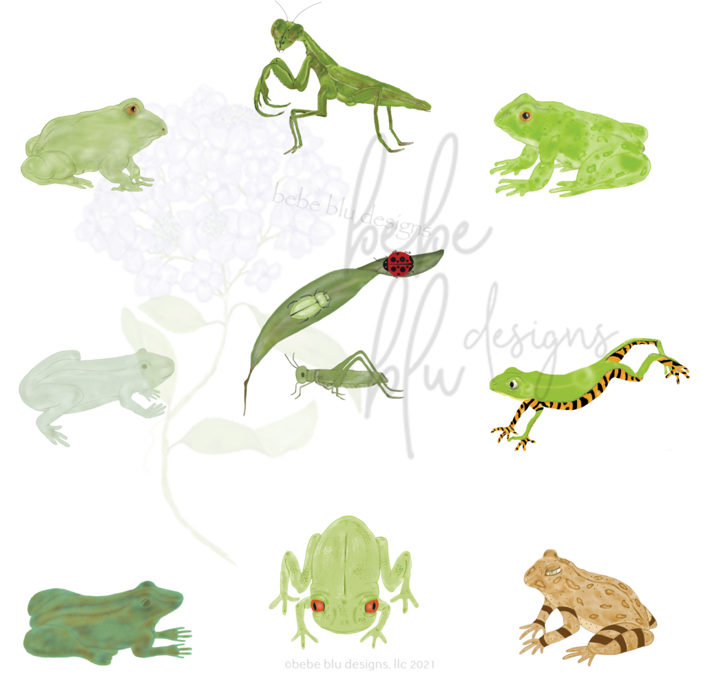 frogs and such