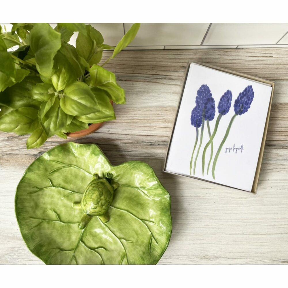 grapy hyacinth box
