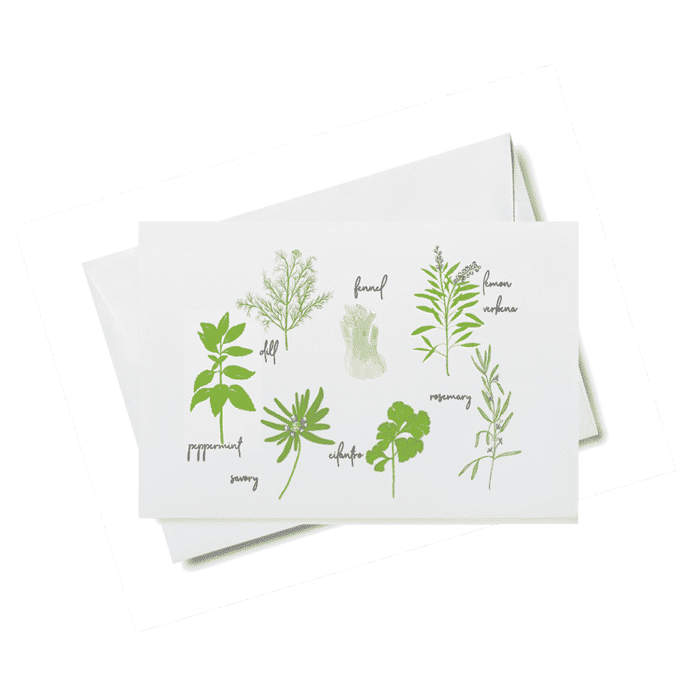 green herb for web