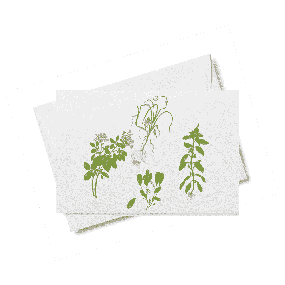 herbs card for web