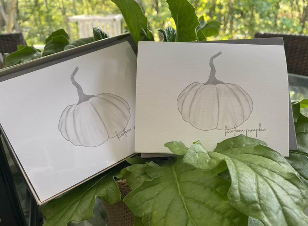 long stem pumpkin note cards