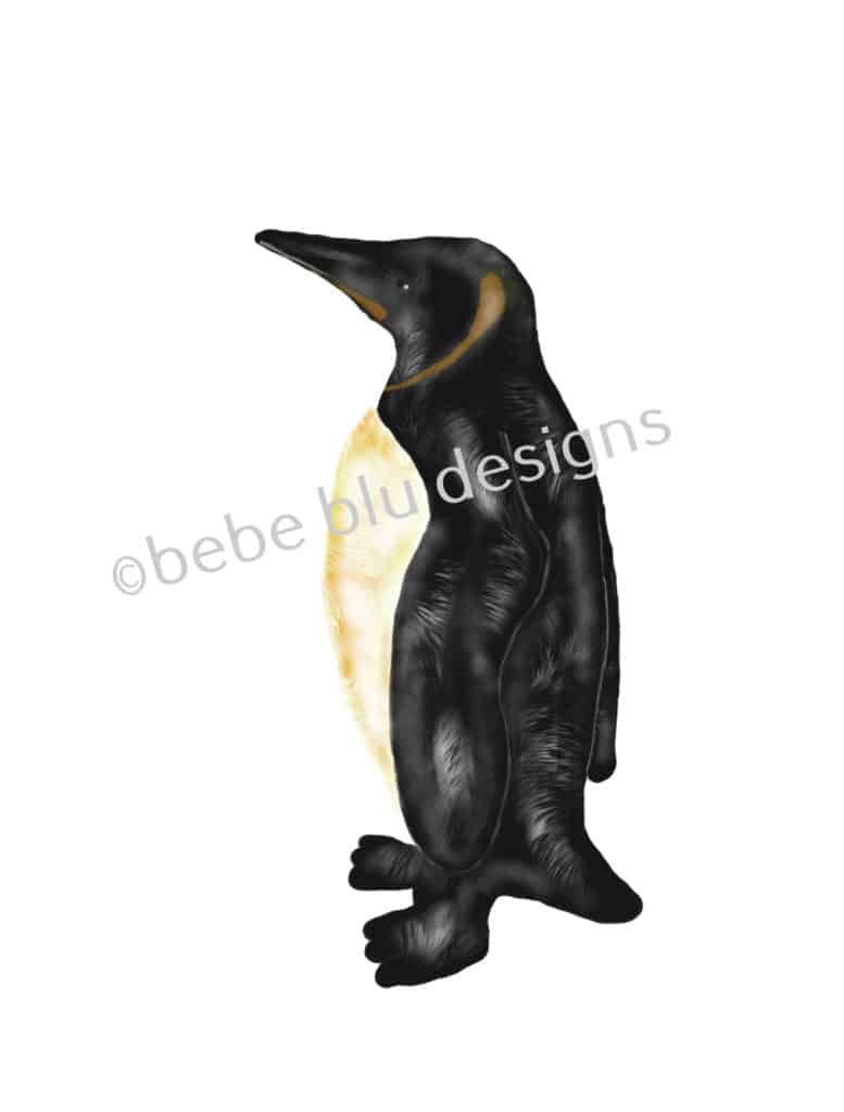bebeblue designs: penguin artwork