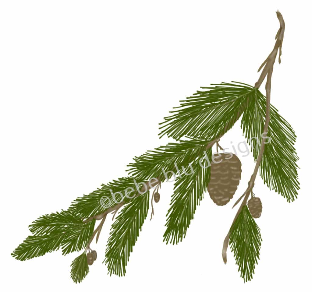 bebeblue designs: pine cone branch artwork