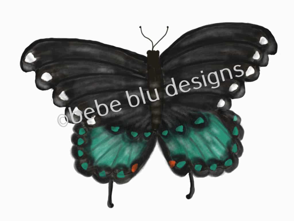 bebeblue designs: swahill butterfly artwork